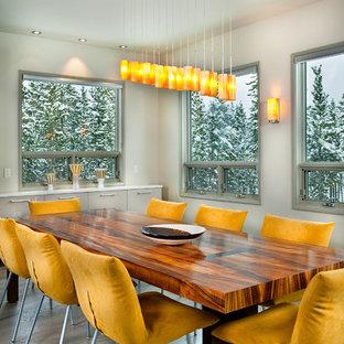 Esempio di un'ampia sala da pranzo aperta verso la cucina minimal con pareti grigie, parquet chiaro, camino classico, cornice del camino in pietra e pavimento grigio