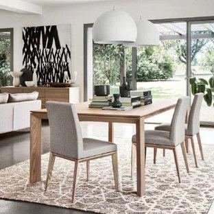Foto di una grande sala da pranzo aperta verso la cucina contemporanea con pareti bianche, pavimento in cemento e nessun camino