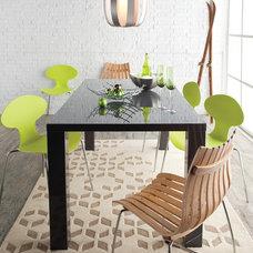 Contemporary Dining Room by Hayneedle
