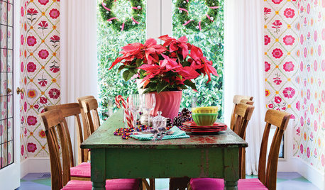 How to Keep Your Gift Plants Happy After the Holidays