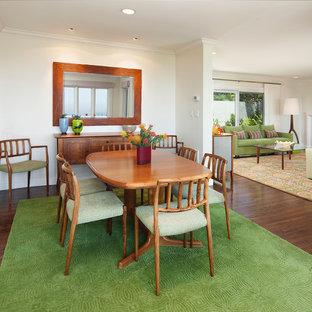 Diseño de comedor clásico, de tamaño medio, con paredes blancas, suelo de madera en tonos medios y chimenea tradicional