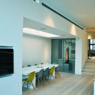 Contemporary Extension Chiswick