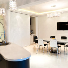 Contemporary Dining Room by Aristova Design Studio