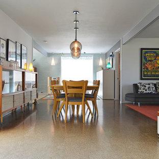 Mid-century modern great room photo in Dallas