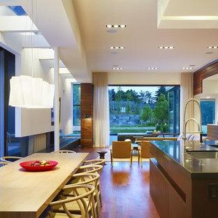 Идея дизайна: большая гостиная-столовая в стиле модернизм с белыми стенами, паркетным полом среднего тона, угловым камином и фасадом камина из металла