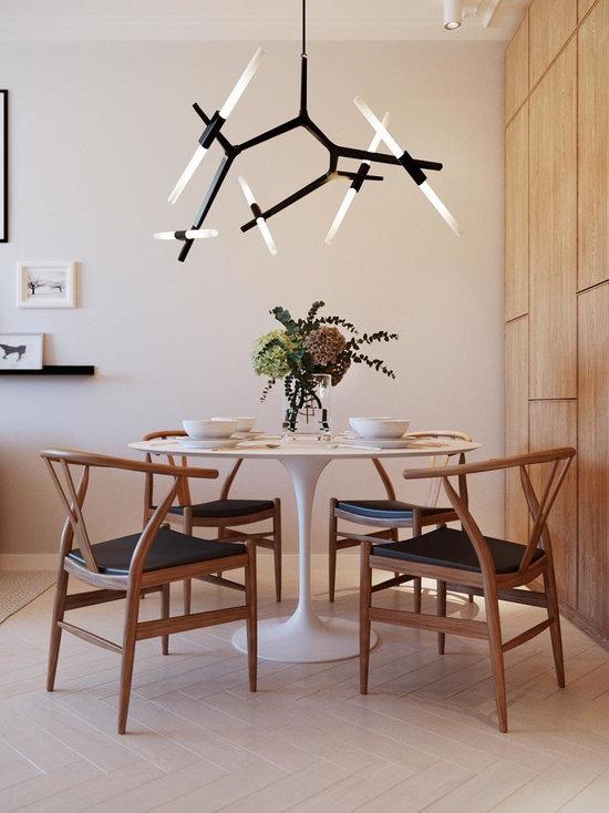 Small Dining Room Design small dining room design ideas, remodels & photos