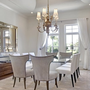 Example of a transitional dark wood floor dining room design in Orlando with white walls