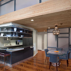 Modern Dining Room by Eisner Design LLC