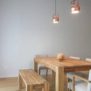 Ejemplo de comedor de cocina moderno, pequeño, con paredes blancas y suelo de madera clara