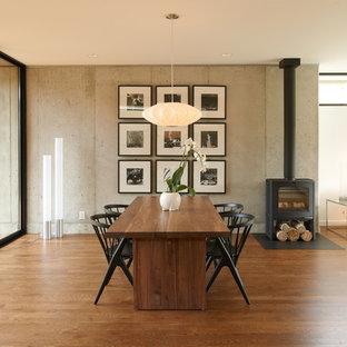 Источник вдохновения для домашнего уюта: гостиная-столовая в стиле модернизм с темным паркетным полом и печью-буржуйкой