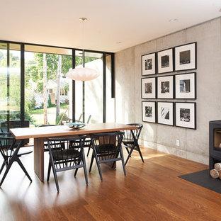 Foto de comedor moderno, de tamaño medio, con suelo de madera en tonos medios, estufa de leña y paredes grises
