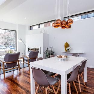 Diseño de comedor contemporáneo, de tamaño medio, abierto, con paredes blancas, suelo de madera en tonos medios, chimenea lineal y marco de chimenea de metal