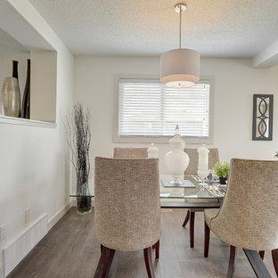 Foto di una sala da pranzo aperta verso la cucina tradizionale di medie dimensioni con pareti bianche, pavimento in laminato, nessun camino e pavimento grigio