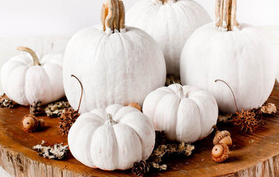 Decorating: Stylishly Alternative Pumpkin Ideas for Halloween