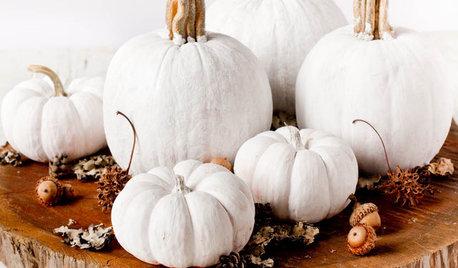 Decorating: Stylishly Alternative Pumpkin Ideas for Halloween