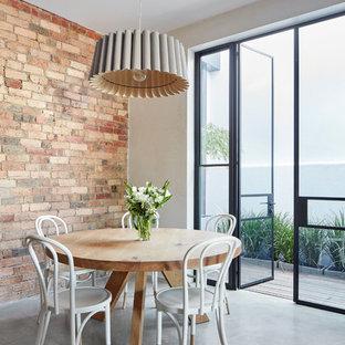 Esempio di una sala da pranzo contemporanea con pareti marroni, pavimento in cemento e pavimento grigio