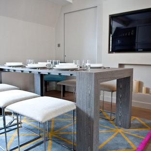 Foto di una piccola sala da pranzo minimalista chiusa con pareti bianche, parquet scuro, camino classico e cornice del camino in intonaco
