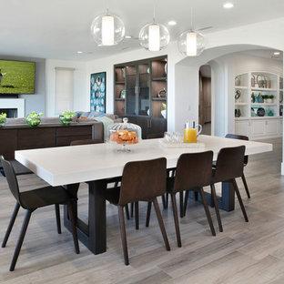 Idee per un'ampia sala da pranzo aperta verso la cucina design con pareti bianche, pavimento grigio, pavimento in gres porcellanato e camino classico