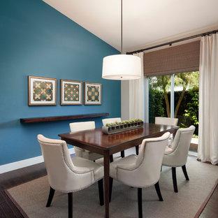Exempel på en mellanstor modern separat matplats, med blå väggar och mörkt trägolv