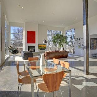 Foto di una sala da pranzo minimalista con pavimento in cemento, pareti bianche e pavimento grigio