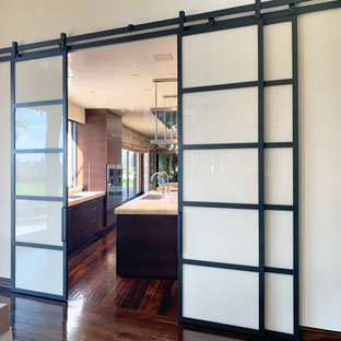 Glass and Metal Barn Doors with Custom Painted Glass