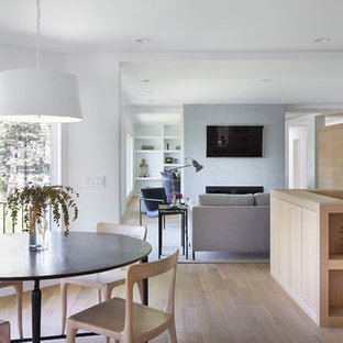 Inspiration for a mid-sized scandinavian light wood floor and beige floor great room remodel in Minneapolis with white walls, a two-sided fireplace and a plaster fireplace