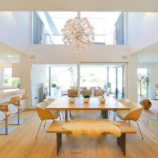 Offenes, Großes Modernes Esszimmer mit weißer Wandfarbe, braunem Holzboden, Tunnelkamin und verputztem Kaminsims in Sonstige