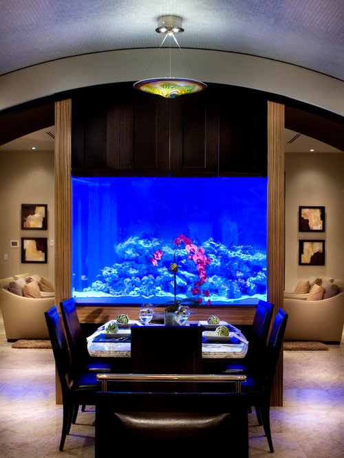 Amazing home aquariums design ideas remodel pictures houzz - Fish tank dining room table ...