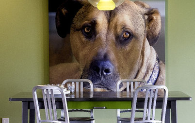 Doggy Decor: 10 Ways to Make Your Dog Feel Like Part of the Family