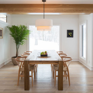 Inspiration For A Modern Light Wood Floor Dining Room Remodel In Minneapolis With White Walls