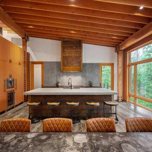 Ispirazione per una grande sala da pranzo aperta verso il soggiorno minimalista con pareti arancioni, pavimento in legno massello medio, camino bifacciale, cornice del camino in metallo e pavimento grigio