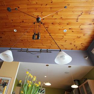 Diseño de comedor ecléctico, de tamaño medio, con paredes amarillas, suelo de madera clara y chimeneas suspendidas