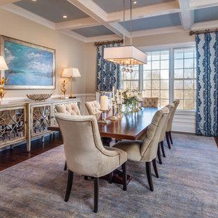 Esempio di una sala da pranzo contemporanea con pareti grigie, pavimento in legno massello medio e pavimento blu