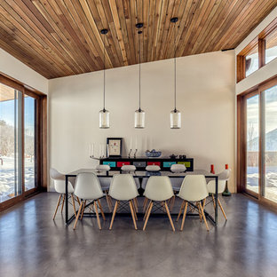 Trendy concrete floor dining room photo in Salt Lake City with white walls