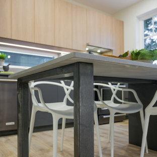 Foto di una piccola sala da pranzo aperta verso la cucina industriale con pareti bianche, pavimento in vinile, nessun camino e pavimento beige