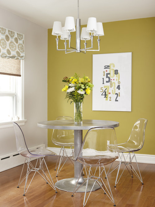 Best 15 Modern Dining Room Ideas Amp Decoration Pictures Houzz