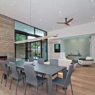 Cette image montre une salle à manger minimaliste avec un mur blanc, un sol en bois brun, une cheminée ribbon et un manteau de cheminée en métal.