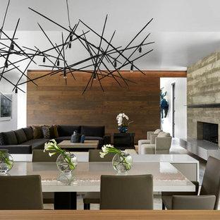 Foto di una sala da pranzo aperta verso il soggiorno design di medie dimensioni con pareti bianche, pavimento in cemento, camino classico, cornice del camino in cemento e pavimento grigio