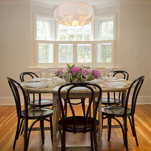 Example of a mid-sized mountain style medium tone wood floor dining room design in Boston with white walls and no fireplace