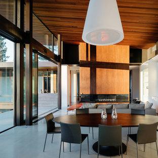 Immagine di una sala da pranzo aperta verso la cucina contemporanea di medie dimensioni con pareti bianche, pavimento in cemento, camino lineare Ribbon, cornice del camino in legno e pavimento grigio