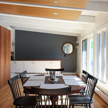 Mid-Century Modern Interior Renovation