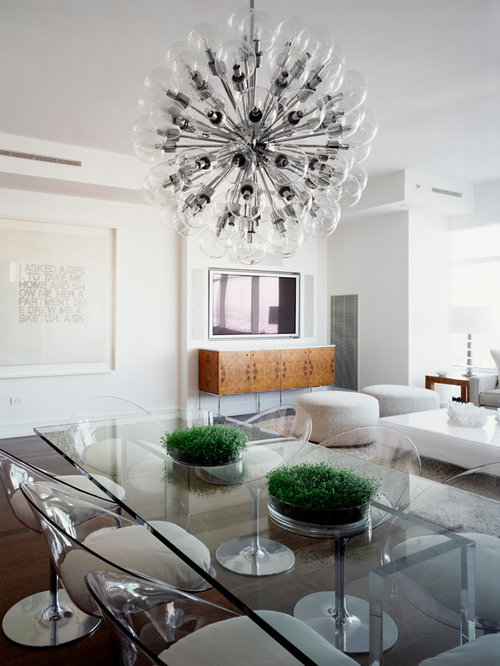 Houzz Clear Acrylic Dining Chairs Design Ideas Remodel Pictures