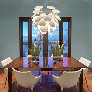 Ispirazione per una sala da pranzo aperta verso la cucina minimal di medie dimensioni con pareti blu e pavimento in terracotta