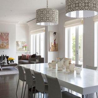 Foto di una grande sala da pranzo aperta verso la cucina design con pareti bianche, parquet scuro, camino classico, cornice del camino in intonaco e pavimento marrone