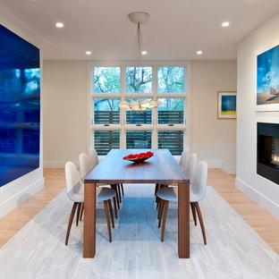 Foto de comedor de cocina actual, grande, con paredes blancas, suelo de madera clara, chimenea de doble cara y marco de chimenea de metal