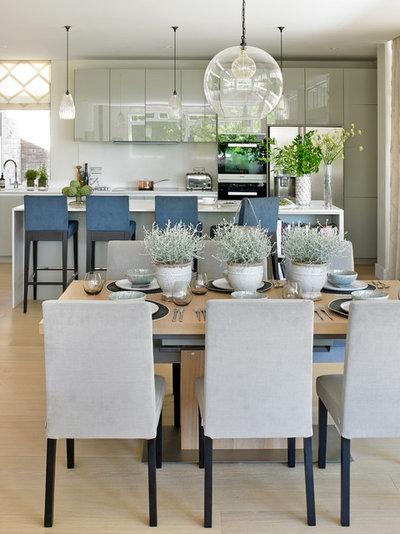 Great Transitional Dining Room by Susan Venn Design