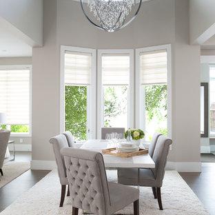 Ispirazione per una grande sala da pranzo aperta verso il soggiorno tradizionale con pareti grigie e pavimento in vinile