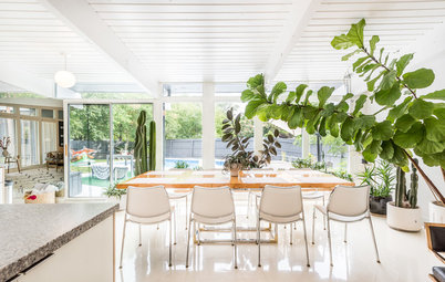 My Houzz: Lush Oasis in a Modern Indoor-Outdoor Family Home