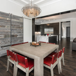 Inspiration For A Contemporary Dark Wood Floor And Brown Floor Dining Room  Remodel In Tampa With