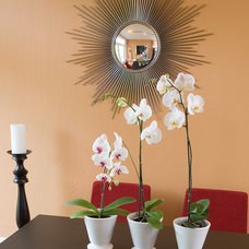 Modern Dining Room by Kimball Starr Interior Design